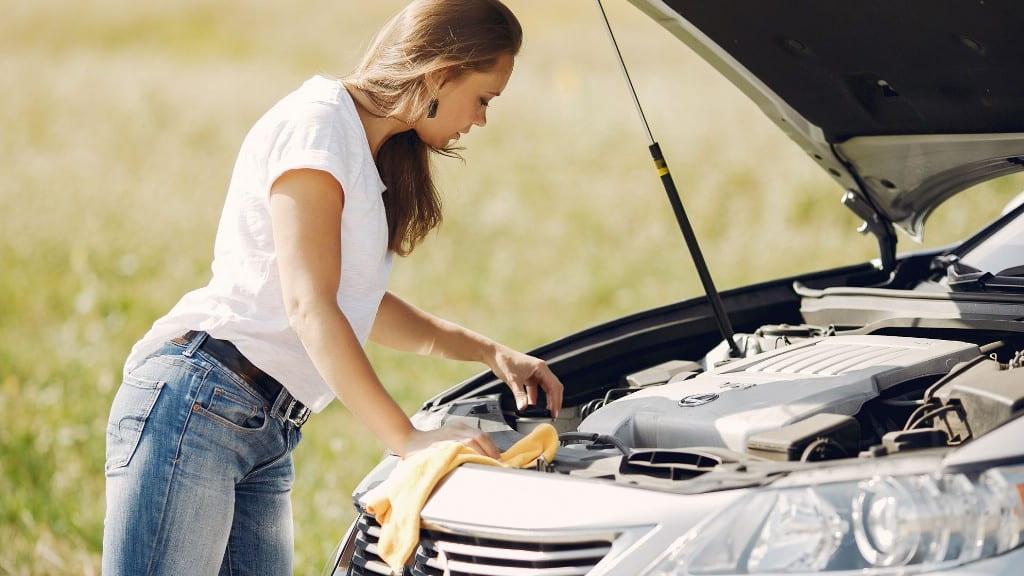 Миття моторного відсіку авто.
